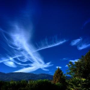 Fishbone Clouds by Tim Carl